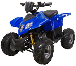 X-Treme XA-1000 ATV Parts