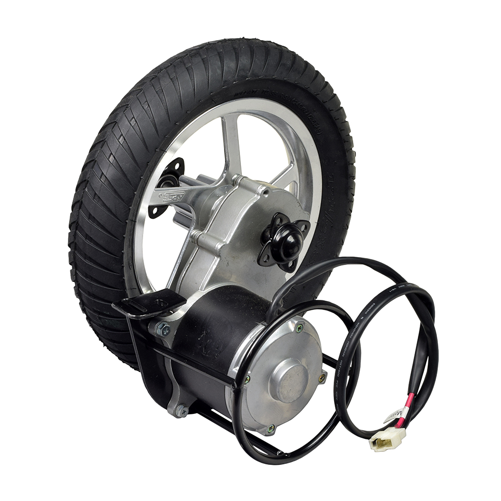 24 Volt 450 Watt Direct Drive Electric Motor & Rear Wheel Assembly