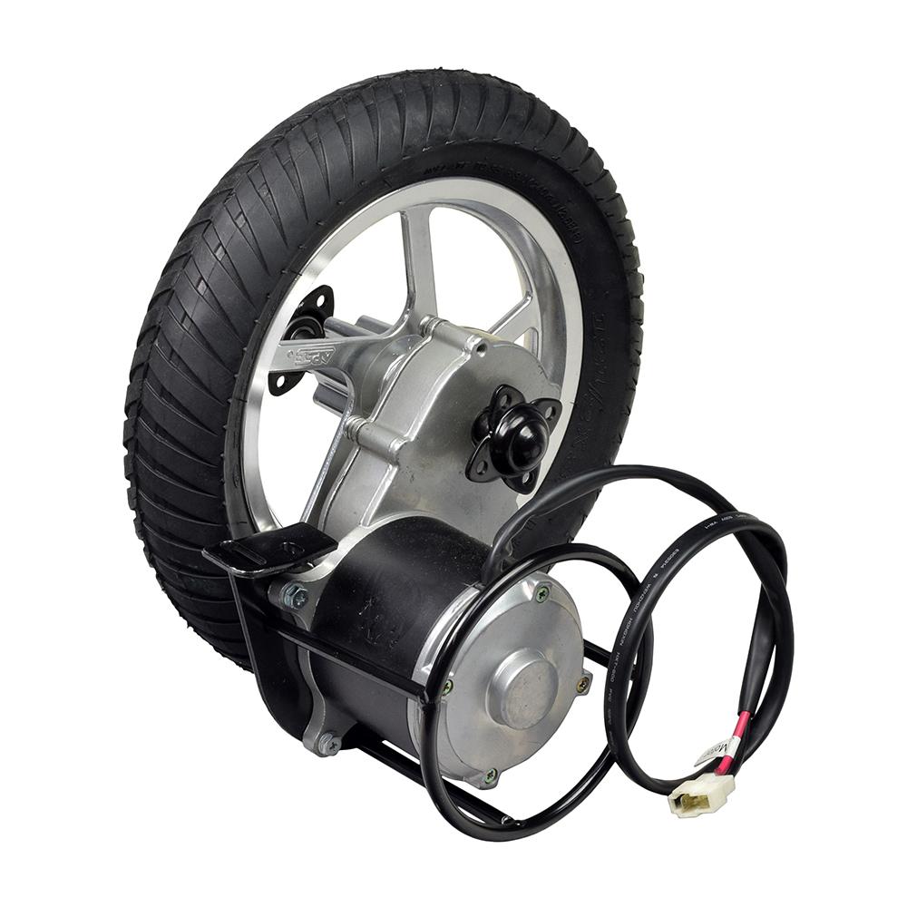 24 Volt 450 Watt Direct Drive Electric Motor & Rear Wheel Assembly