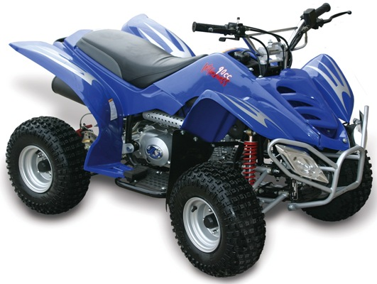 Baja Wilderness 90 (WD90) 90cc ATV Parts