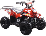Coolster ATV-3050C 110cc ATV Parts