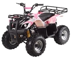 TaoTao ATA-110D ATV Parts
