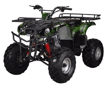 TaoTao ATA-250D ATV Parts