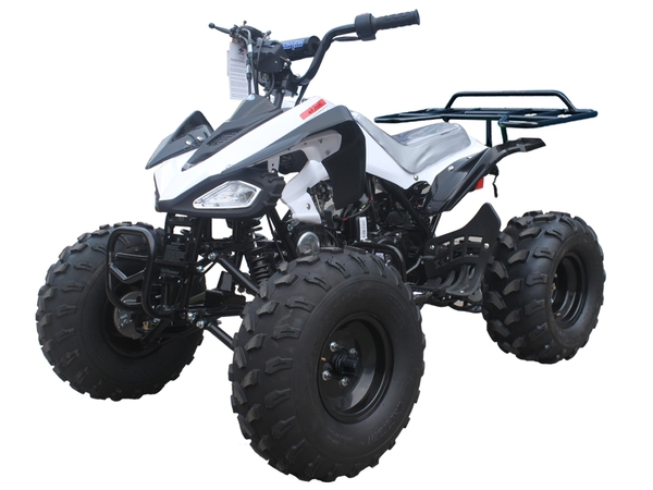 TaoTao Cheetah ATV Parts