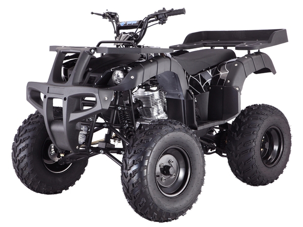 TaoTao Rhino 250 ATV Parts